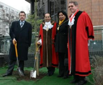 Tree Planted as a Remembrance for the Assyrian Genocide